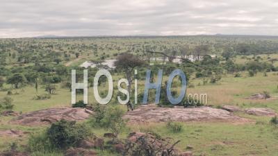 Photographe Photographiant Un Paysage Africain à Laikipia, Kenya. Vidéo Aérienne Par Drone