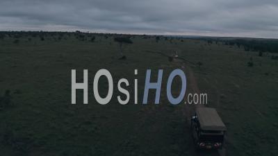Safari Game Drive à L'aube à Laikipia, Kenya, Afrique. Vidéo Aérienne Par Drone Suivre