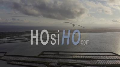 Le Croisic Loire Atlantique France Marais Salant Sunset Spring - Video Drone Footage