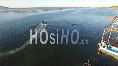 Oyster Farm On Etang De Thau, Video Drone Footage