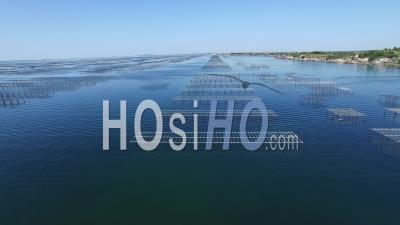 Oyster Farm On Etang De Thau, Video Drone Footage