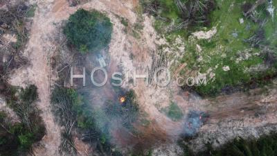 Aerial View Tractor Involve In Open Burning Of Oil Palm Tree - Video Drone Footage