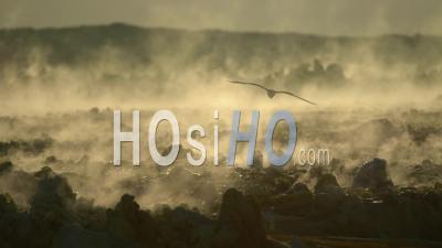 Activité Hydrothermale à Dallol, Au Nord De L'Éthiopie