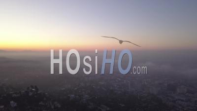 Sur Les Collines D'hollywood Au Lever Du Soleil Avec Vue Sur Los Angeles Dans Les Nuages 4k - Vidéo Aérienne Par Drone