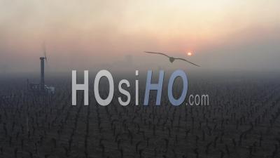 Vue Aérienne, Machine à Vent Anti-Gel Dans Le Vignoble De Bordeaux Pendant Des Températures Inférieures à Zéro Du 7 Avril 2021 - Séquence De Drone Vidéo