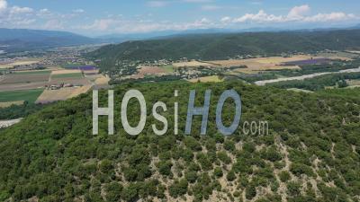 Vallée De La Durance Avec Des Champs De Lavande En Fleurs, Provence - Vidéo Drone