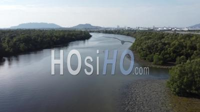 Fly Across Dark River With Mangrove Tree - Video Drone Footage