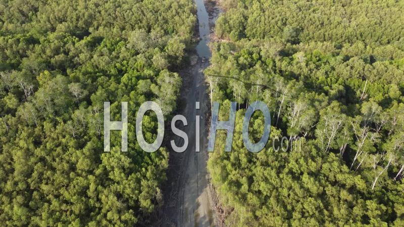 Galerie d'Images Aériennes & Terrestres autour de la déforestation