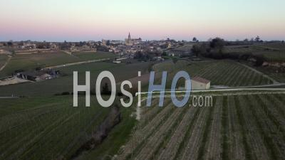 Vineyards Saint Emilion In Winter, Video Drone Footage