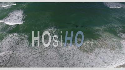 Beach Of Carcans, Seen By Drone