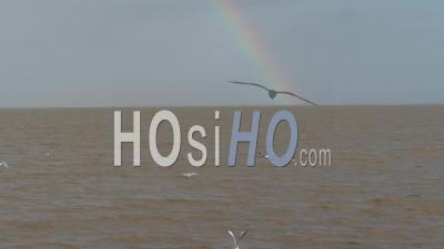 Arc En Ciel Sur L'océan, Vidéo Drone