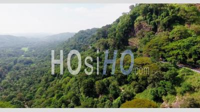 Rainforest In Sri Lanka, Filmed By Drone